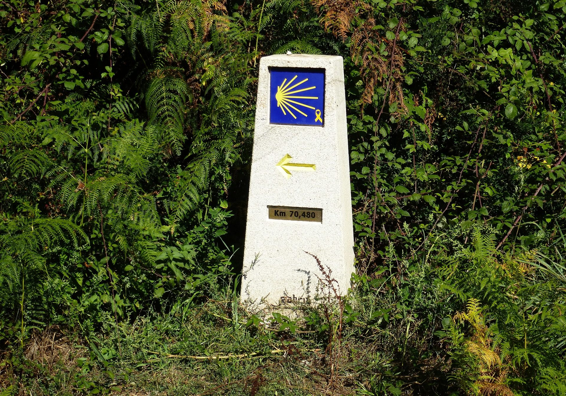 milemarker-way-of-st-james-1757859_1920